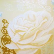 large white rose with columns